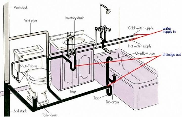 Det Bortglömda Systemet - Lymfsystemet